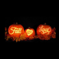 Fall in Love with Hearts Shaded