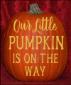Our Little Pumpkin is on the Way