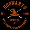 Hogwarts School Logo