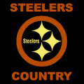 Pittsburgh Steelers 08