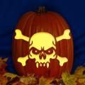 Vamp Skull CO