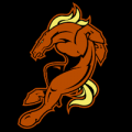 Denver Broncos 05