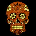 Sugar Skull Flower Eyes