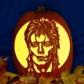 Ziggy Stardust CO