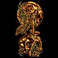 Skull Fairy