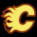 Calgary Flames 01