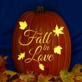 Fall in Love CO