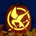 Hunger Games CO
