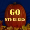 Pittsburgh Steelers 08 CO