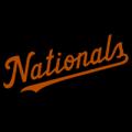 Washington Nationals 22