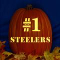 Pittsburgh Steelers 05 CO
