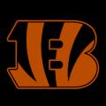 Cincinnati Bengals 03