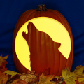Wolf Head Moon CO