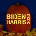 Biden Harris 2020 CO