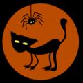 Black Cat and Spider