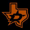 Dallas Stars 10