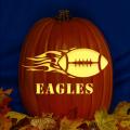 Philadelphia Eagles 07 CO