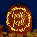 Hello Fall 01 CO