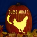Guess What - Chicken Butt CO