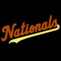 Washington Nationals 25