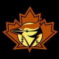 Toronto Blue Jays 18