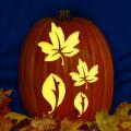 Leaf Templates CO