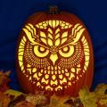 Round Owl CO