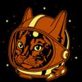 Astrocat 02
