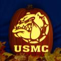 USMC Bulldog Head CO