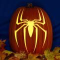 Spiderman Spider CO