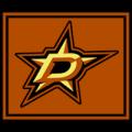 Dallas Stars 14