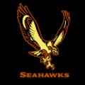 Seattle Seahawks 10