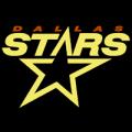 Dallas Stars 01