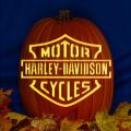 Harley Davidson CO