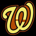 Washington Nationals 15