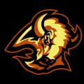 Buffalo Sabres 02