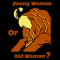 Young Or Old Woman Illusion