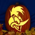 Woody Woodpecker CO