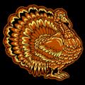 Fancy Turkey 02