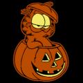 Garfield Inside Pumpkin