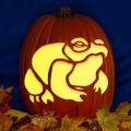 Bull Frog CO