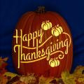 Happy Thanksgiving Pumpkins CO