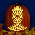 Spider-Man Head 02 CO
