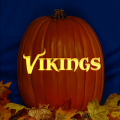 Minnesota Vikings 06 CO