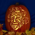 Albert Einstein Tongue CO