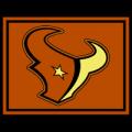 Houston Texans 05