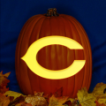 Chicago Bears 01 CO