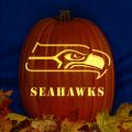 Seattle Seahawks 02 CO