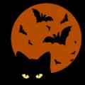 Cat Moon 02
