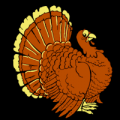 Turkey 01